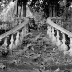 escalier-reunion